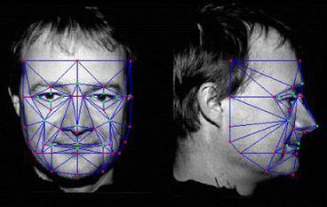 Facial Characteristic